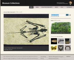 NPS Museum collections home page