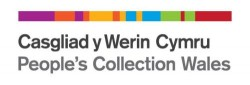 """Fig 3: The branding for the People's Collection Wales represents the """"DNA of Wales"""""""
