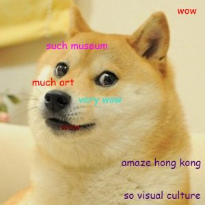 doge pic advertising collections database manager at m+